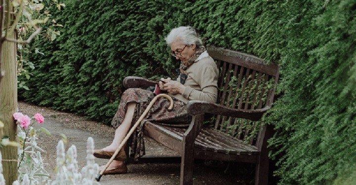 Older Queenslanders in danger of being digitally excluded preview image