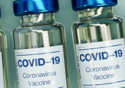 COVID-19 vaccination rollout preview image